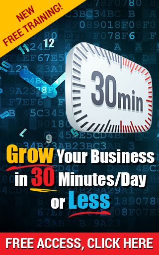 Grow Your Business in 30 Minutes/Day or Less