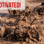 how to keep motivated
