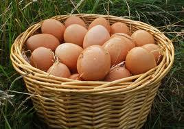 eggs image