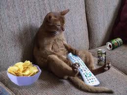 couch potato image